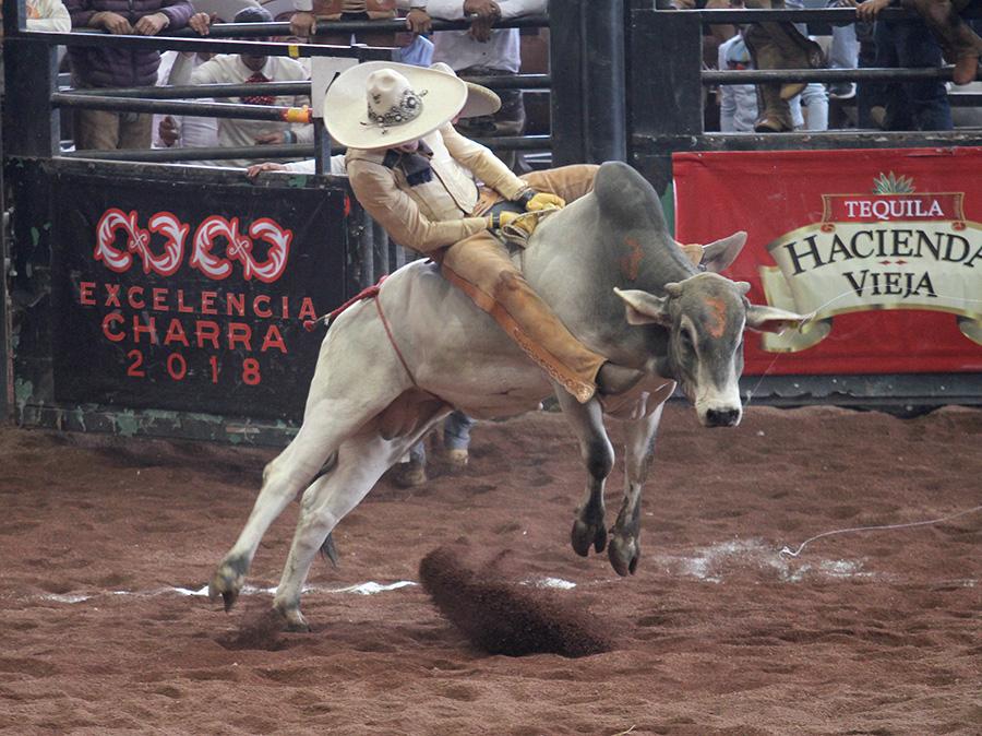 Cumplió con creces Asunción Sáenz en la jineteada de toro para Tres Potrillos