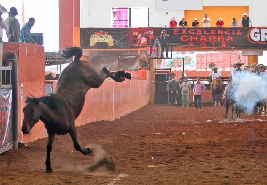 Alejandro Coss y León cuajó sus tres piales para Rancho San José