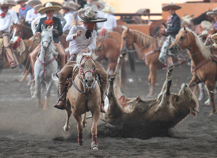 Los Charros de Jalisco colearon de 102 puntos acumulados